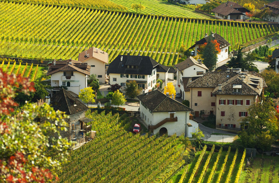 """Apfelplantagen bestimmen in weiten Teilen Südtirols das Landschaftsbild. Foto: """"Kreutnerbinder Hof""""/Tobias Brummer"""